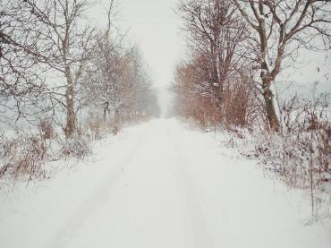 visul unei nopţi de iarnă
